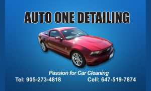Auto One Detailing